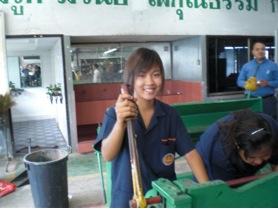 thaipopulation